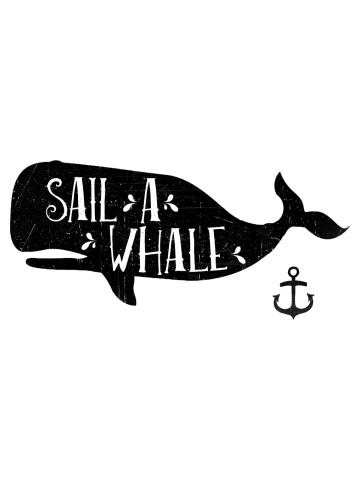 Sail a Whale II