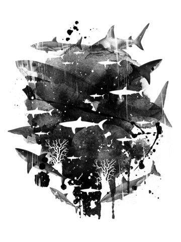 School of Jaws