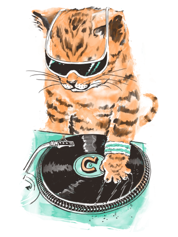 Scratch Master kitty Cat