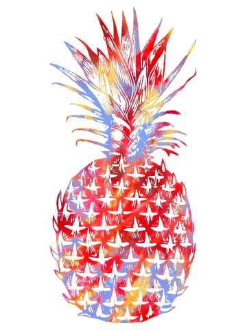 Tie Dye Summer Pinapple