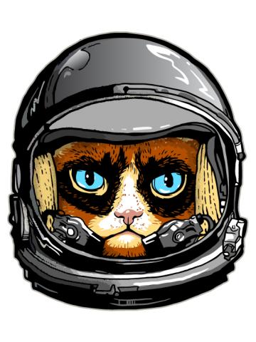 Grumpy Astronaut Cat