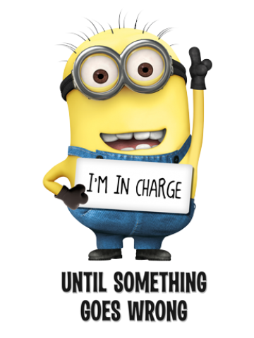 I'm In Charge - Minions